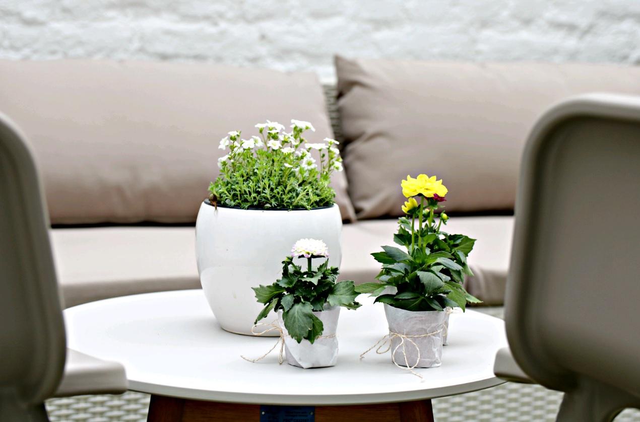 Full Size of Komfort Gartensofa Tchibo 2 In 1 Eine Gemtliche Gartenlounge Im Hof Zum Wohlfhlen Und Entspannen Wohnzimmer Gartensofa Tchibo