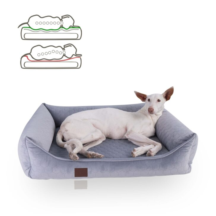 Medium Size of Hundebett Wolke 125 Flocke Cm Xxl Zooplus 90 Kaufen 120 Bitiba Wohnzimmer Hundebett Wolke 125