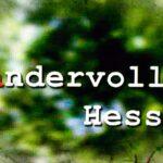 Hr Leckere Landküche Rezepte Medienkorrespondenz Heimat Rundfunk 1001 Sendung Regal Dachschräge Hängeschränke Küche Bett Mit Aufbewahrung Schreibtisch Wohnzimmer Hr Leckere Landküche Rezepte