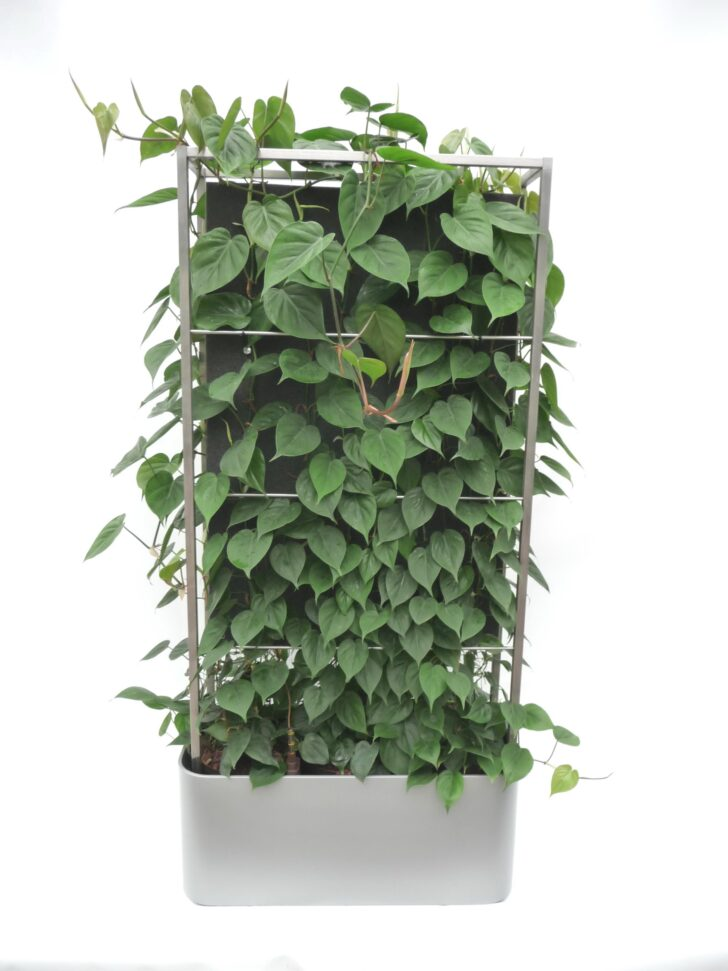 Medium Size of Paravent Balkon Bauhaus Pflanzen Mobiler Raumteiler Si Fenster Garten Wohnzimmer Paravent Balkon Bauhaus