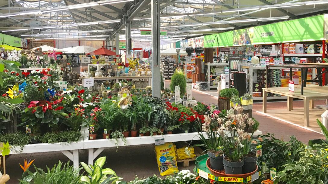 Large Size of Gartencenter Und Pflanzenwelt Sturm Bauzentrum Bauhaus Fenster Wohnzimmer Bauhaus Gartenbrunnen