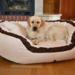 Hunde Bett Hundebett Wolke Auto Holz Flocke 125 Kaufen 90 Cm Wohnzimmer Hundebett Wolke 125