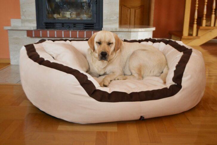 Medium Size of Hunde Bett Hundebett Wolke Auto Holz Flocke 125 Kaufen 90 Cm Wohnzimmer Hundebett Wolke 125
