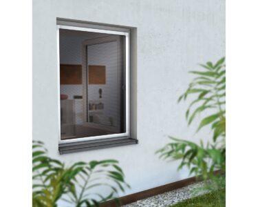 Sonnenschutzfolie Fenster Obi Wohnzimmer Sonnenschutzfolie Fenster Obi 120x120 Insektenschutz Online Kaufen Bei Trocal Sichtschutzfolie Sicherheitsfolie Erneuern Kosten Bodentiefe Für Schüco Nach