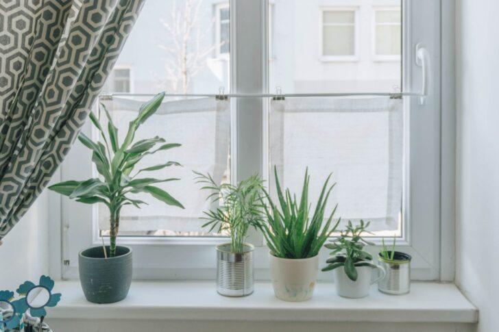 Medium Size of Vorhänge Diy Wohnzimmer Mini Fenster Vorhnge Als Sichtschutz Das Schlafzimmer Küche Wohnzimmer Vorhänge