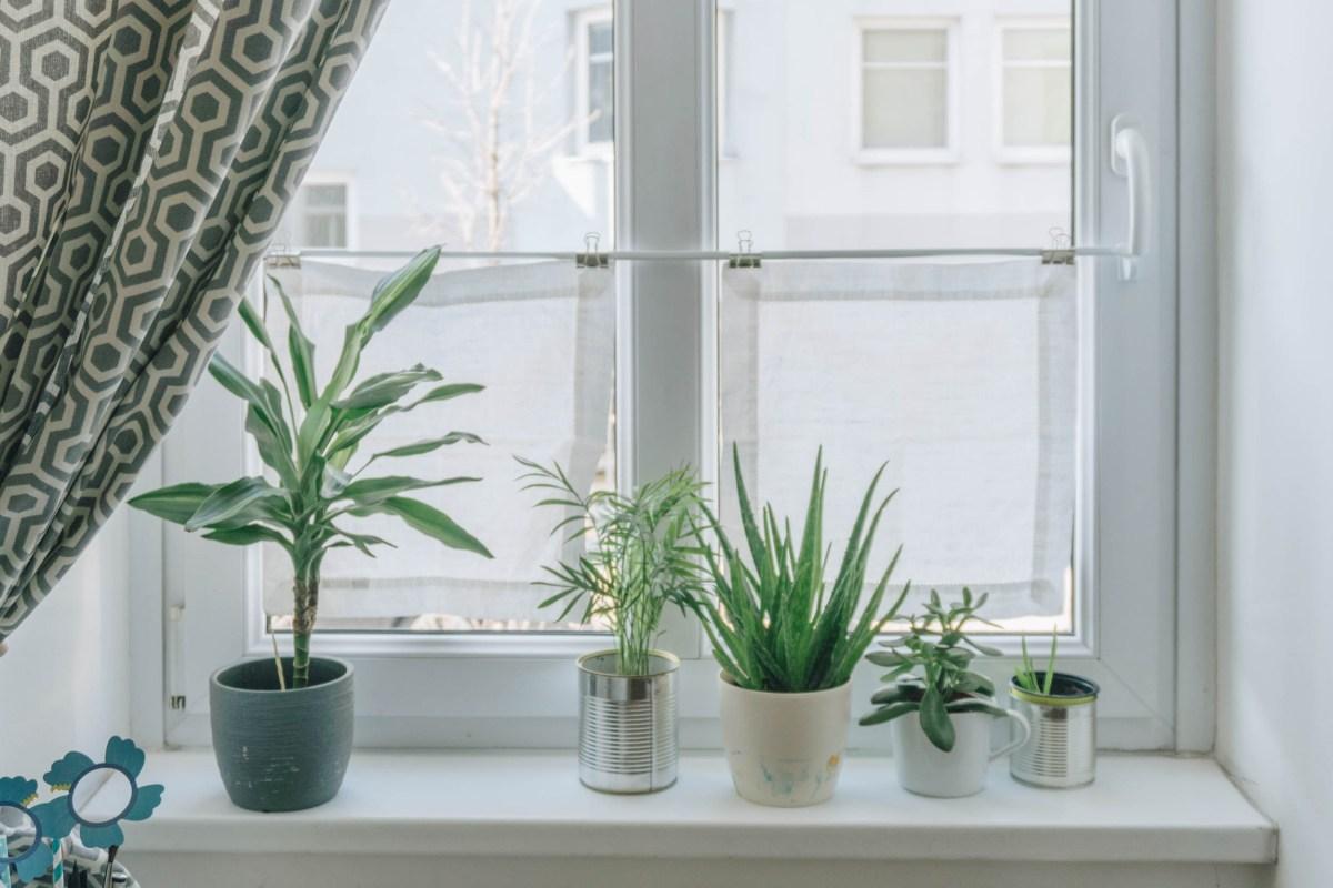 Full Size of Vorhänge Diy Wohnzimmer Mini Fenster Vorhnge Als Sichtschutz Das Schlafzimmer Küche Wohnzimmer Vorhänge