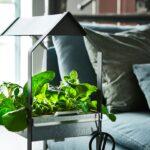 Dekoration Mit Krutern Grne Dekobrise Ikea Deutschland Betten 160x200 Küche Kosten Modulküche Bei Kräutertopf Miniküche Kaufen Sofa Schlaffunktion Wohnzimmer Kräutertopf Ikea