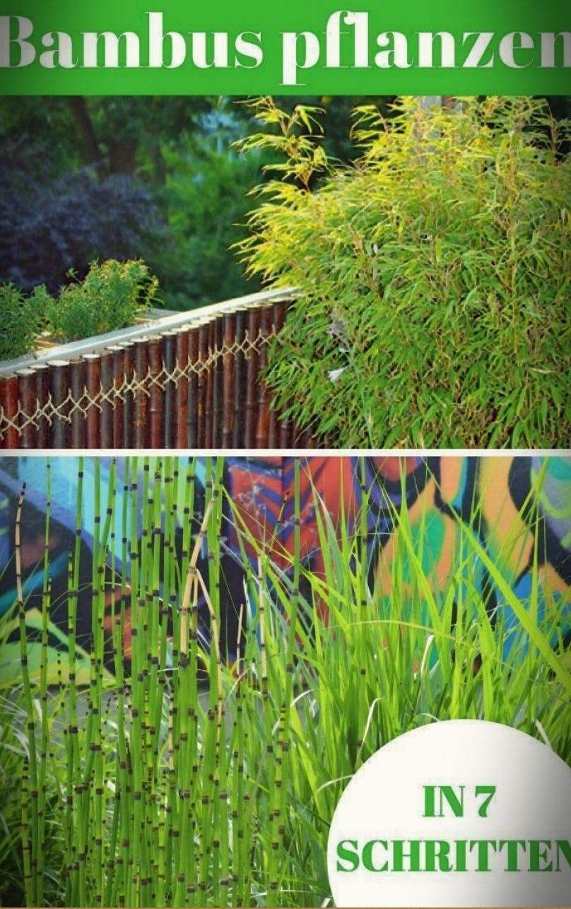 Full Size of Sichtschutz Archives Practical Life Relaxsessel Garten Tisch Wpc Aldi Für Fenster Sichtschutzfolien Im Sichtschutzfolie Wohnzimmer Sichtschutz Aldi
