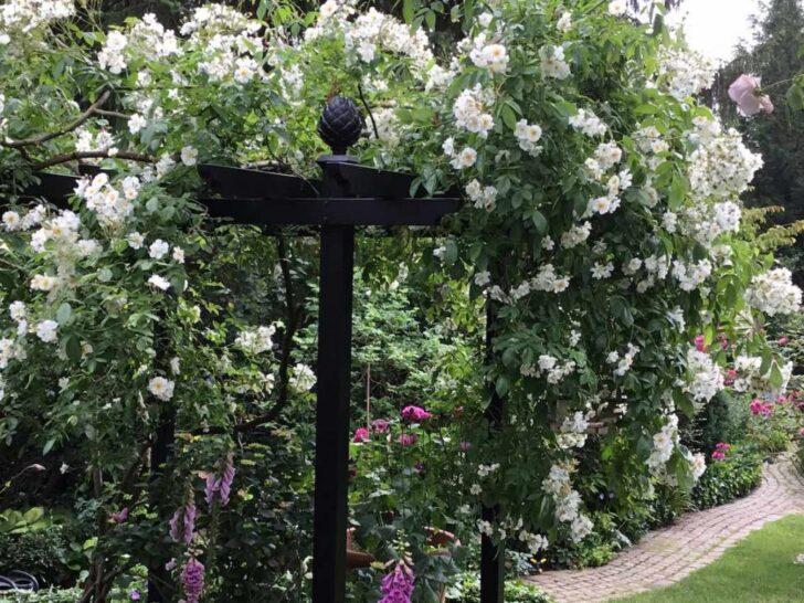 Medium Size of Pavillon Eisen Gartenpavillon Aus Metall Alles Im Blog Ber Gartenlauben Und Garten Wohnzimmer Pavillon Eisen