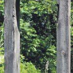 Ausstellung Natur Und Skulptur Im Garten Augsburger Allgemeine Stellenangebote Baden Württemberg Bad Bodenfliesen Skulpturen Lounge Sessel Feuerschale Wohnzimmer Eisenskulpturen Für Den Garten