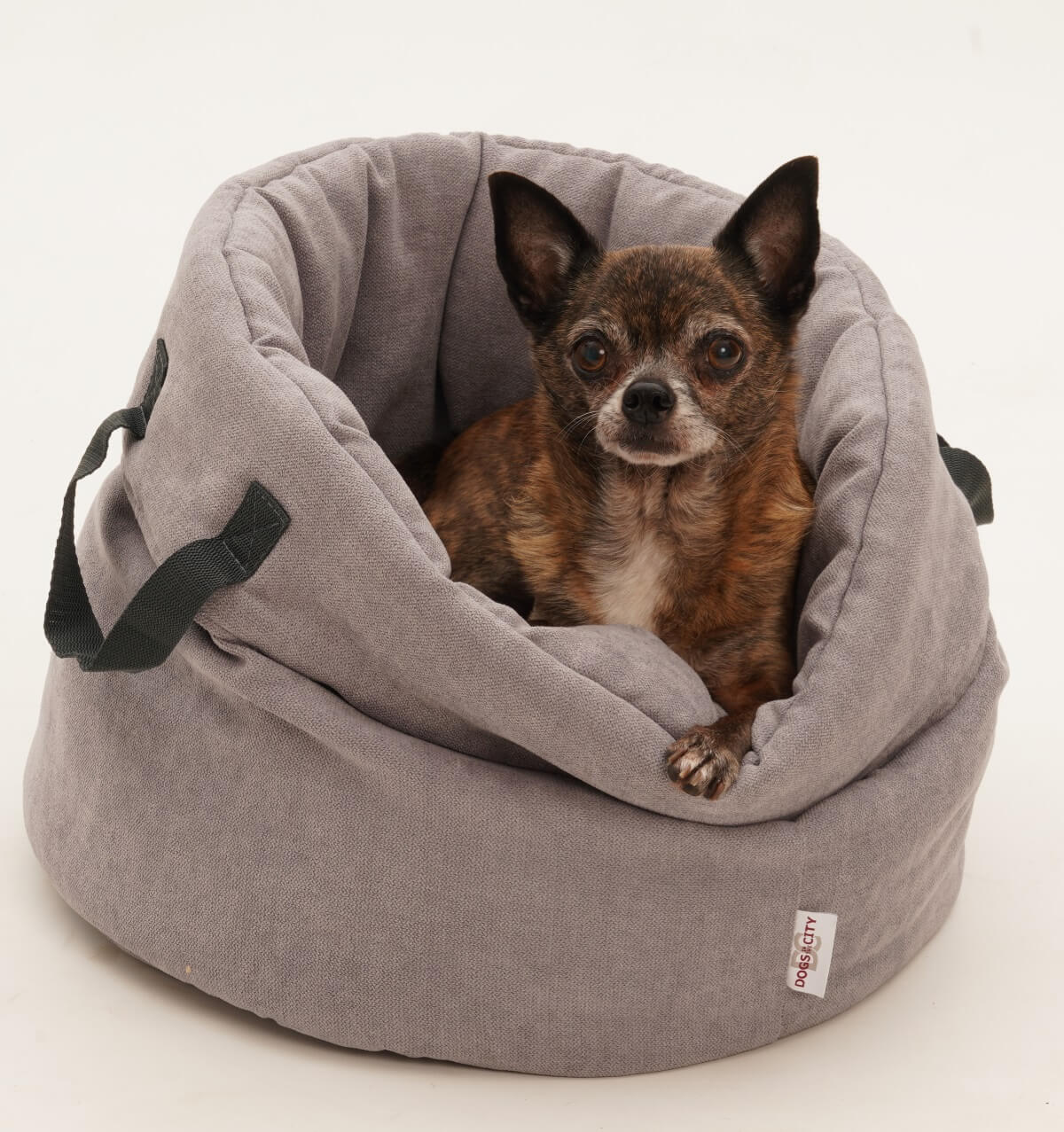 Full Size of Dogs In The City Hundekorb Shopper Little Basket Grau Regal Tiefe 30 Cm 50 Breit 20 Tief 40 Sofa Sitzhöhe 55 25 60 80 Hoch Bett Liegehöhe 120 Wohnzimmer Hundebett Flocke 125 Cm