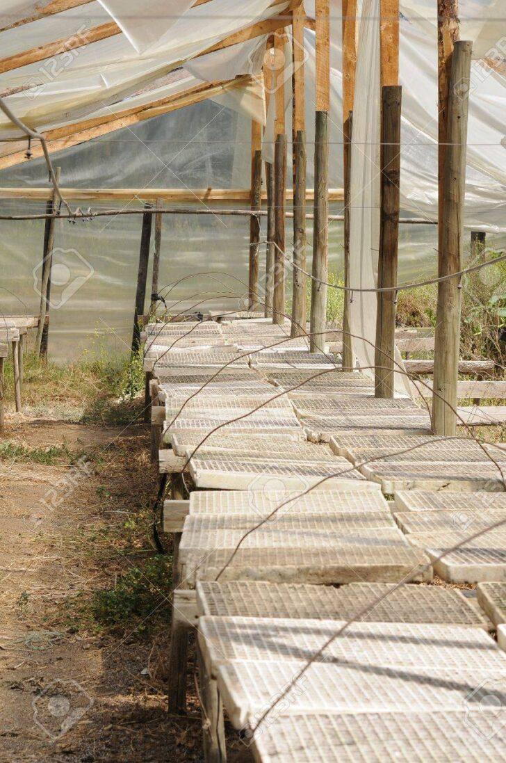 Medium Size of Gewächshaus Holz Gewchshaus Lizenzfreie Fotos Alu Fenster Esstische Massivholz Regal Weiß Altholz Esstisch Bad Waschtisch Schlafzimmer Komplett Spielhaus Wohnzimmer Gewächshaus Holz