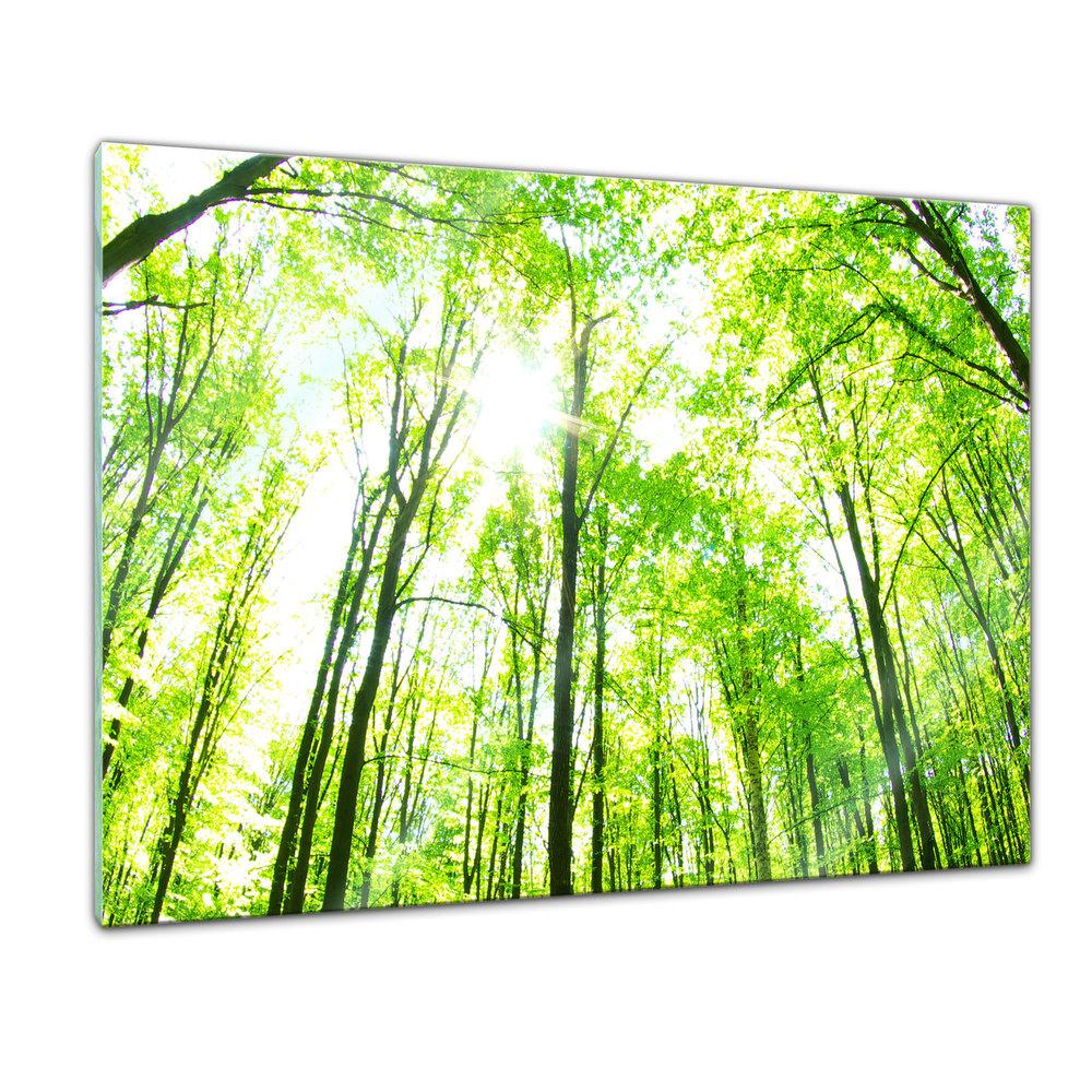 Full Size of Glasbild 120x50 Mustang 50x50 Cm Rakuten Glasbilder Küche Bad Wohnzimmer Glasbild 120x50