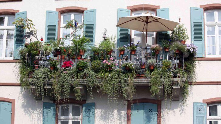 Medium Size of Paravent Bambus Balkon Sichtschutz Fr Den 10 Ideen Plus Tipps Zur Montage Bett Garten Wohnzimmer Paravent Bambus Balkon