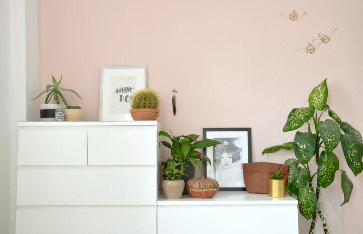 Medium Size of Wandfarbe Rosa Farbe In Meinem Schlafzimmer Interior Küche Wohnzimmer Wandfarbe Rosa