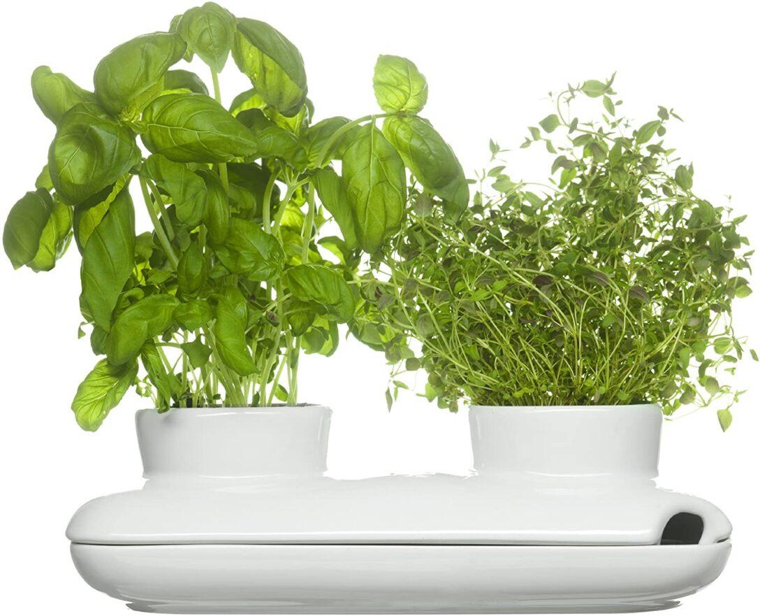 Large Size of Sagaform Herbs Spices Krutertopf Keramik Waschbecken Küche Kräutertopf Wohnzimmer Kräutertopf Keramik