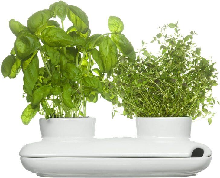 Medium Size of Sagaform Herbs Spices Krutertopf Keramik Waschbecken Küche Kräutertopf Wohnzimmer Kräutertopf Keramik