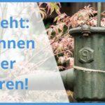 Bauhaus Gartenbrunnen Baumarkt Wien Pumpe Brunnen Bohren Online Shop Solar Solarbrunnen Brunnenbauanleitung Einen Rammbrunnen Selber Schlagen Fenster Wohnzimmer Bauhaus Gartenbrunnen