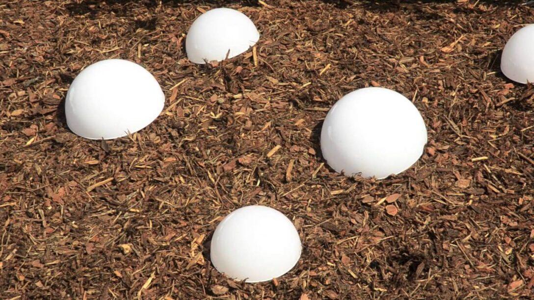Large Size of Solarkugeln Aldi Solar Kugelleuchte Hornbach Relaxsessel Garten Wohnzimmer Solarkugeln Aldi