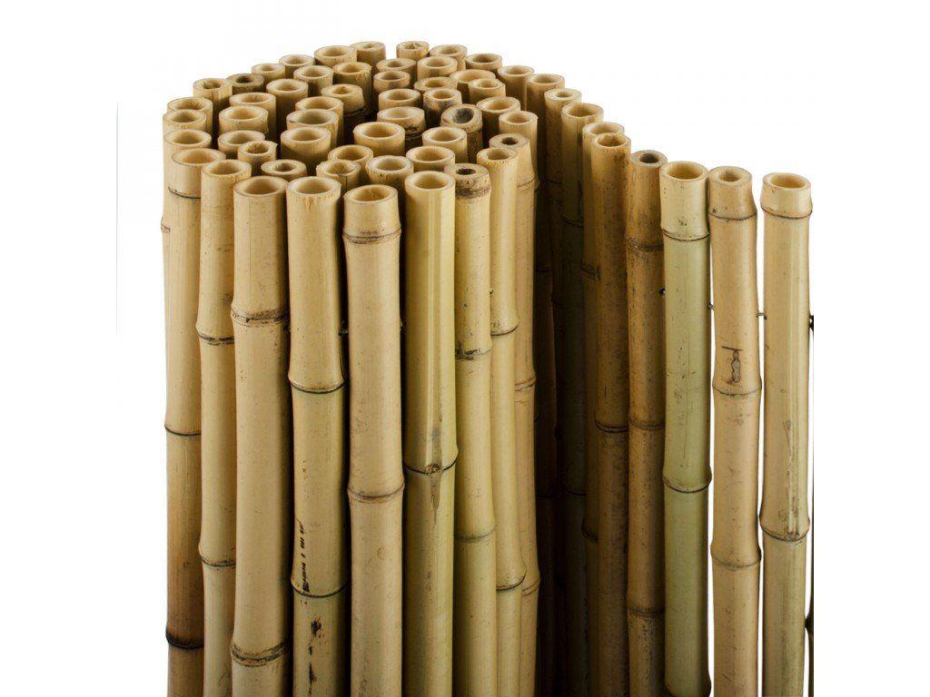 Full Size of Paravent Bambus Balkon Sichtschutzzaun Natur 3 Gren Volle Bambusrohre Garten Bett Wohnzimmer Paravent Bambus Balkon
