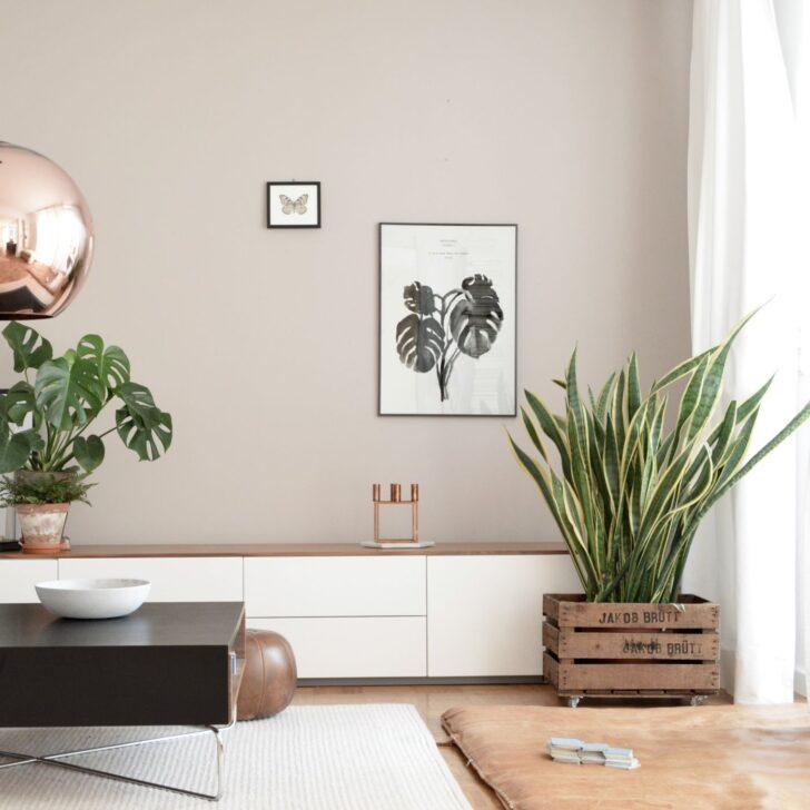 Medium Size of Schnsten Ideen Fr Deine Wandfarbe Rosa Küche Wohnzimmer Wandfarbe Rosa