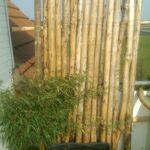 Paravent Bambus Balkon Obi Selbstgemacht Kreativer Windschutz Garten Bett Wohnzimmer Paravent Bambus Balkon