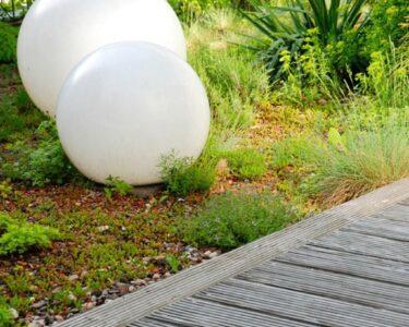 Solarkugeln Aldi Wohnzimmer Solarkugeln Aldi Kugelleuchte Garten Sluce Globe 50cm Real Relaxsessel