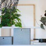 Aufbewahrung Küche Eiche Hell Pendelleuchte Komplettküche Einbauküche Mit Elektrogeräten Glaswand Bodenbeläge Ohne Oberschränke Günstig Kaufen Wohnzimmer Kisten Küche