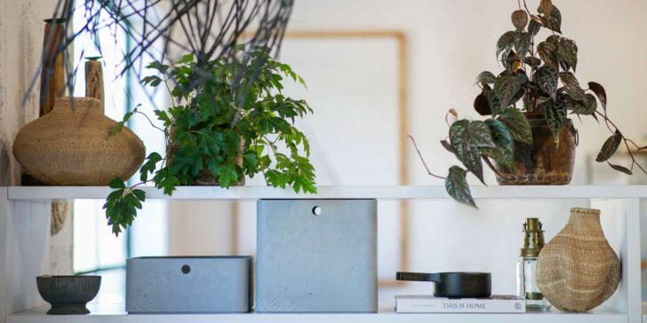 Medium Size of Aufbewahrung Küche Eiche Hell Pendelleuchte Komplettküche Einbauküche Mit Elektrogeräten Glaswand Bodenbeläge Ohne Oberschränke Günstig Kaufen Wohnzimmer Kisten Küche