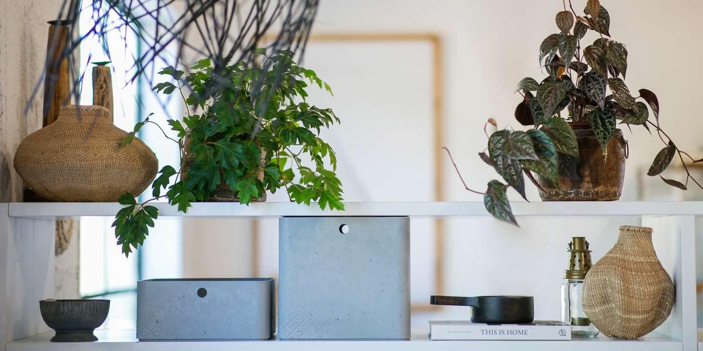 Full Size of Aufbewahrung Küche Eiche Hell Pendelleuchte Komplettküche Einbauküche Mit Elektrogeräten Glaswand Bodenbeläge Ohne Oberschränke Günstig Kaufen Wohnzimmer Kisten Küche