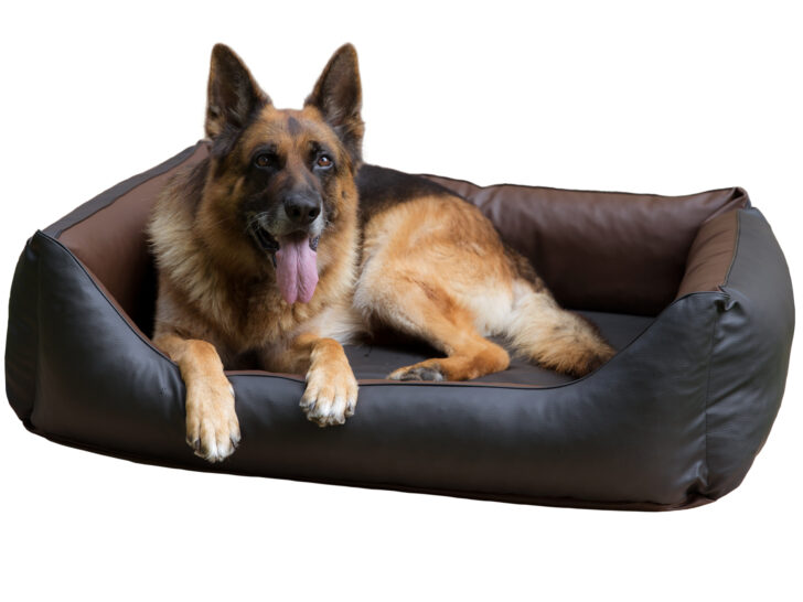 Medium Size of Hundebett Flocke 125 Cm Hundebetten Hundeleinen Online Shop Von Copcopet Regal 40 Breit Bett Liegehöhe 60 25 Tief 80 Hoch 50 20 Tiefe 30 Sofa Sitzhöhe 55 120 Wohnzimmer Hundebett Flocke 125 Cm