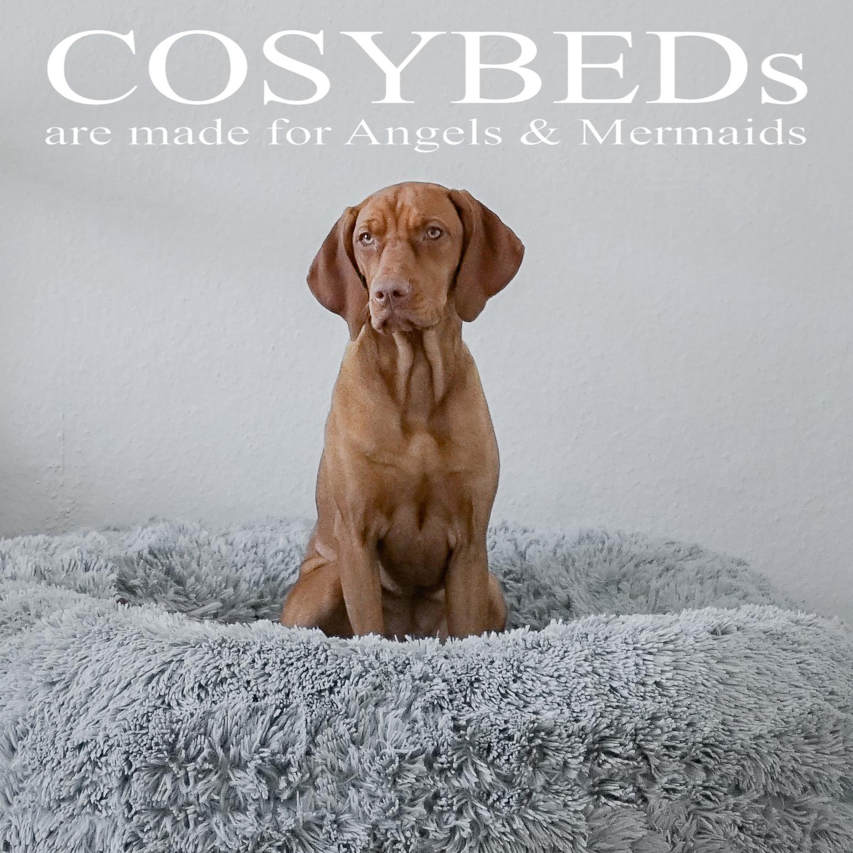 Full Size of Hundebett Wolke 125 Dogs Inn Hundeshop Cosybed Air Longhair Silvergrey Wohnzimmer Hundebett Wolke 125