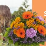 Kippliege Aldi Wohnzimmer Kippliege Aldi Online Services Von Nord Praktische Dienste Fr Kunden Relaxsessel Garten