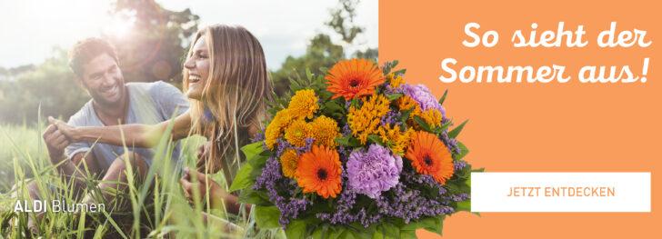 Medium Size of Kippliege Aldi Online Services Von Nord Praktische Dienste Fr Kunden Relaxsessel Garten Wohnzimmer Kippliege Aldi