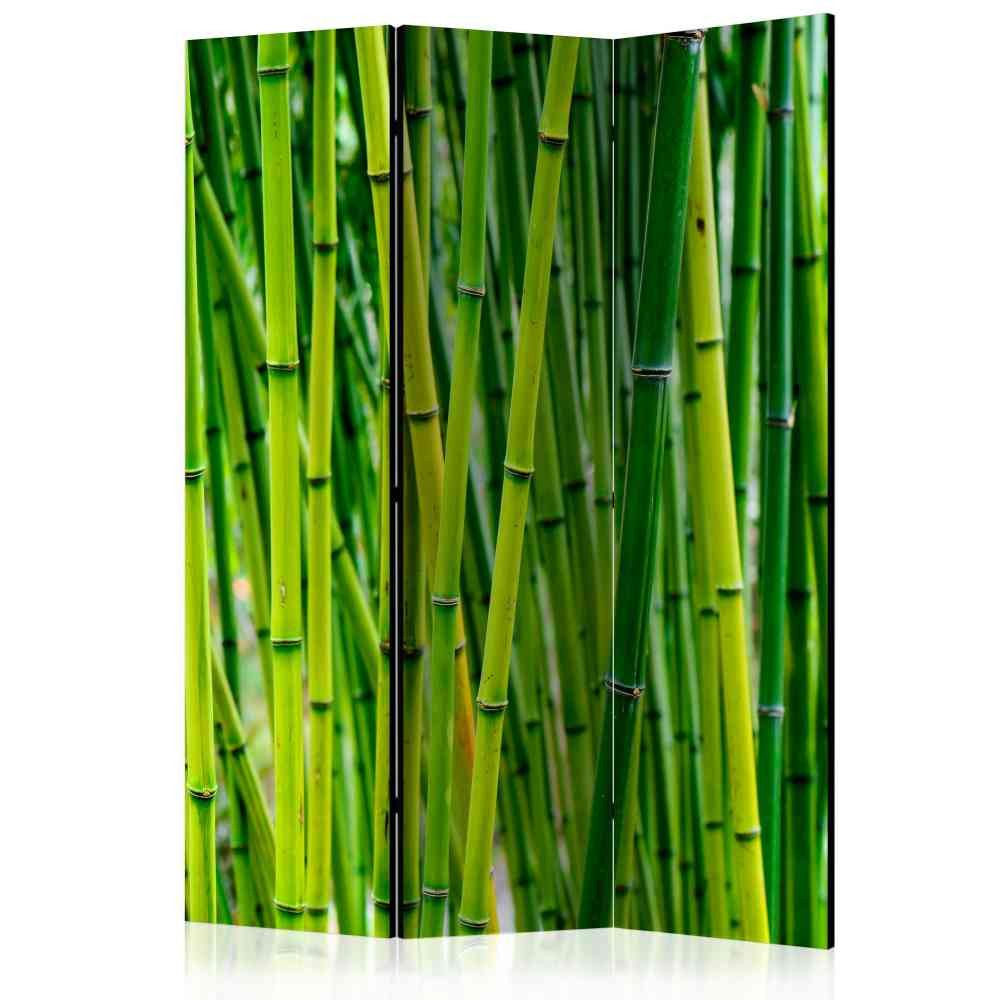 Full Size of Grner Paravent Mit Bambus Foto Druck 2 Seitig 135x172cm Ciliuma Bett Garten Wohnzimmer Paravent Bambus