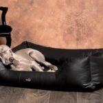 Hundebett Flocke 125 Cm Hunde Bett Erfahrungen Zooplus 90 Xxl Rund Liegehöhe 60 Regal Breit 50 Sofa Sitzhöhe 55 25 Tief Tiefe 30 80 Hoch 40 20 Wohnzimmer Hundebett Flocke 125 Cm