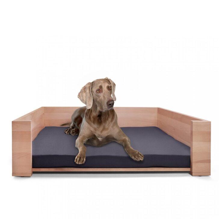 Medium Size of Hundebett Wolke 125 Flocke Rund Test 120 Cm Zooplus Xxl Kaufen Wohnzimmer Hundebett Wolke 125