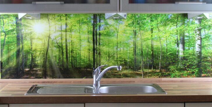 Medium Size of Küchen Glasbilder Kchenrckwand Kaufen Einscheibensicherheitsglas Esg Glasbild 6mm Regal Bad Küche Wohnzimmer Küchen Glasbilder