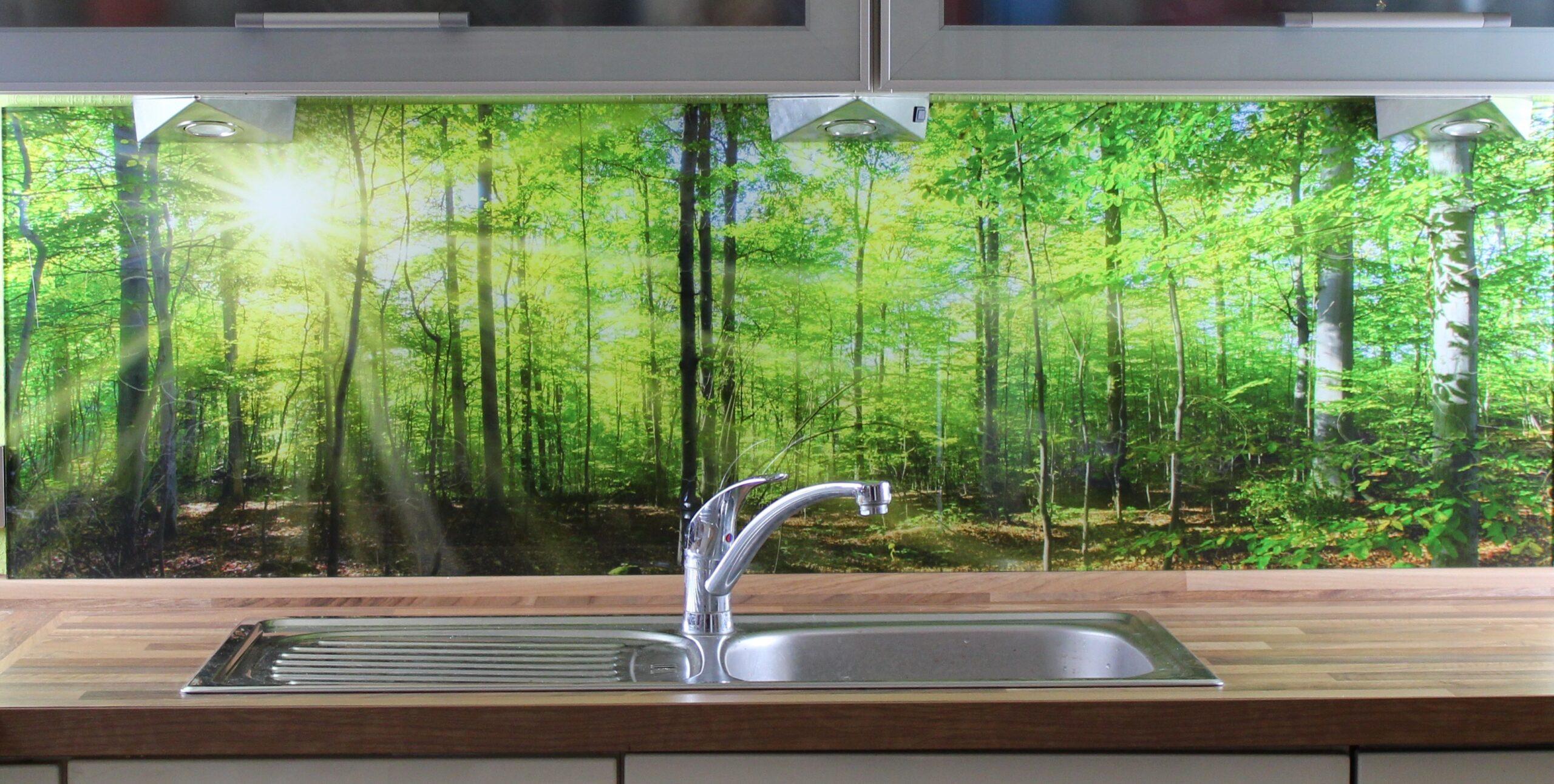 Full Size of Küchen Glasbilder Kchenrckwand Kaufen Einscheibensicherheitsglas Esg Glasbild 6mm Regal Bad Küche Wohnzimmer Küchen Glasbilder
