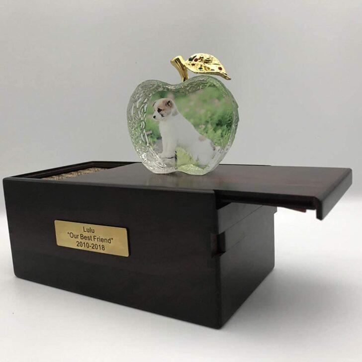 Medium Size of Sofa Lulu Bullfrog Preis Lizongfq Urns Wooden Pet Cremation Urn For Ashes Wohnzimmer Bullfrog Lulu