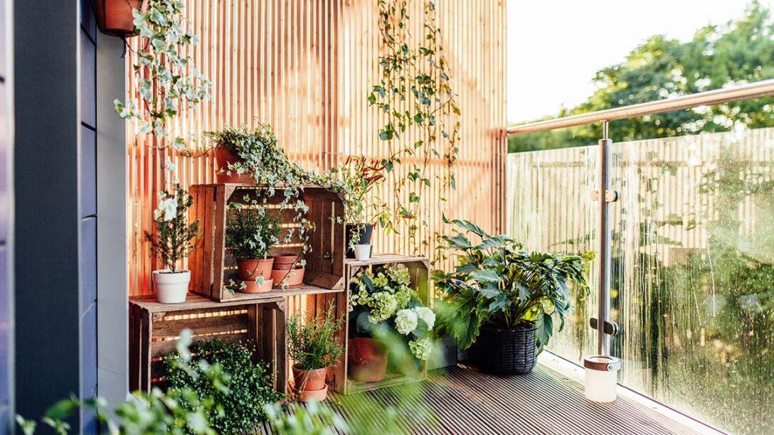 Large Size of Bewässerungssysteme Garten Test Bewässerungssystem Bewässerung Automatisch Wohnzimmer Bewässerung Balkon