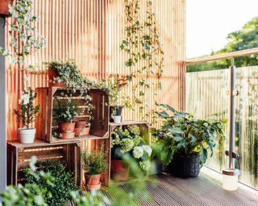 Bewässerung Balkon Wohnzimmer Bewässerungssysteme Garten Test Bewässerungssystem Bewässerung Automatisch