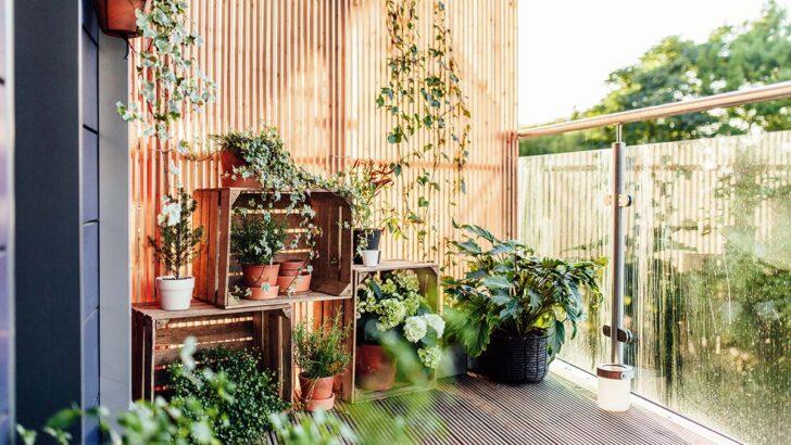 Medium Size of Bewässerungssysteme Garten Test Bewässerungssystem Bewässerung Automatisch Wohnzimmer Bewässerung Balkon