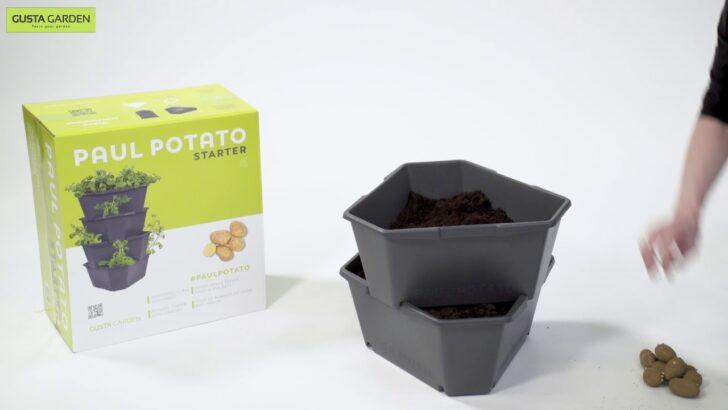 Paul Potato Kartoffelturm Erfahrungen Starter Wohnzimmer Paul Potato Kartoffelturm Erfahrungen
