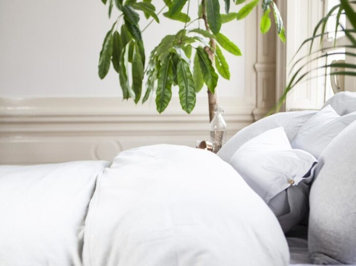 Medium Size of Schlafstudio Helm Preise Bettdecken Tencel Billerbeck Kissen 520 Alcando Online Kaufen Wohnzimmer Schlafstudio Helm