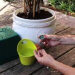 Bewässerung Balkon Pflanzen Gieen Im Urlaub 7 Tricks So Gehts Richtig Preisde Bewässerungssystem Garten Bewässerungssysteme Test Automatisch Wohnzimmer Bewässerung Balkon
