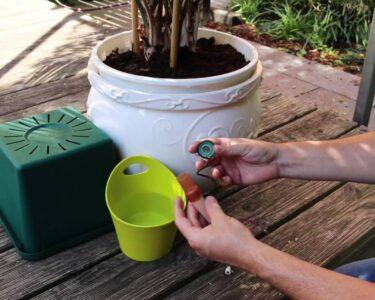 Bewässerung Balkon Wohnzimmer Bewässerung Balkon Pflanzen Gieen Im Urlaub 7 Tricks So Gehts Richtig Preisde Bewässerungssystem Garten Bewässerungssysteme Test Automatisch