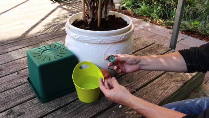 Medium Size of Bewässerung Balkon Pflanzen Gieen Im Urlaub 7 Tricks So Gehts Richtig Preisde Bewässerungssystem Garten Bewässerungssysteme Test Automatisch Wohnzimmer Bewässerung Balkon