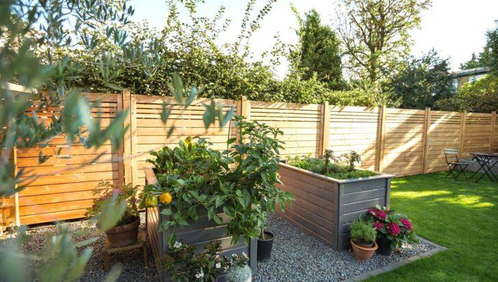 Medium Size of Paravent Balkon Hornbach Sichtschutz Garten Gebraucht Kaufen Nur 4 St Bis 70 Gnstiger Wohnzimmer Paravent Balkon Hornbach