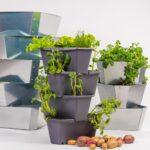 Paul Potato Krntner Startup Erreicht Kickstarter Ziel In Zwei Wohnzimmer Paul Potato Kartoffelturm Erfahrungen